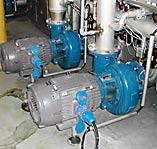 Pump Pasteurizer